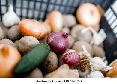 purple and white onion with potato and cucumber