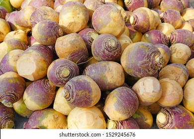 Purple and white rutabaga swede root vegetable at a farmers market in the fall