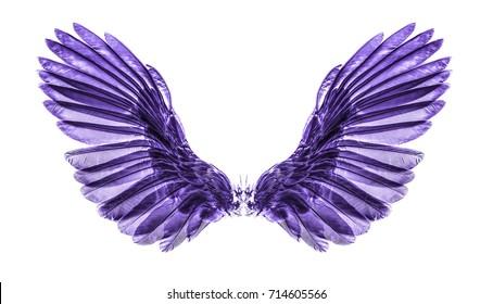 purple wing on black blackground