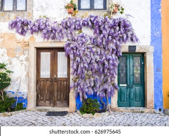 Purple wisteria plant growing around doors of an old house in Portugal.