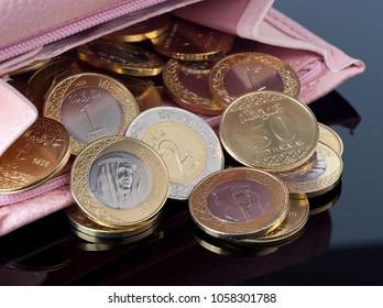 Purse, Open with Saudi Riyal Coins