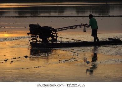 Pushcart  Sunset Field