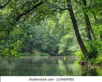 Pushcha Voditsa lake