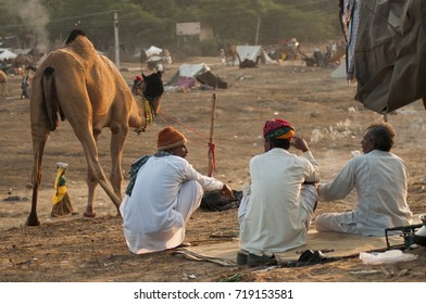 PUSHKAR, INDIA, 19 NOVEMBER 2015 : Indian people and camels in Pushkar Camel Mela (Pushkar Camel Fair) in Pushkar, Rajasthan, India. This fair is the largest camel trading fair in the world