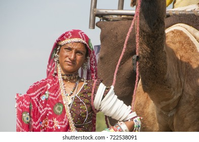 PUSHKAR, INDIA, 19 NOVEMBER 2015 : Indian woman carry their camels for selling in Pushkar Camel Fair at Pushkar, Rajasthan, India. This fair is the largest camel trading fair in the world