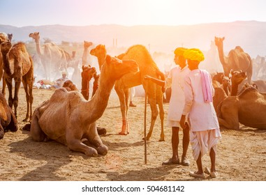 PUSHKAR, INDIA - NOVEMBER 21: An unidentified men attends the Pushkar fair on November 21, 2012 in Pushkar, Rajasthan, India. Farmers and traders from all over Rajasthan flock for the annual fair