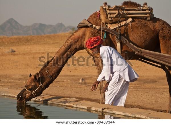 PUSHKAR, INDIA - NOVEMBER 7: A camel trader attends the Pushkar cattle fair on November 7, 2011 in Pushkar, Rajasthan, India. Pushkar cattle fair is the largest camel trading fair in the world.