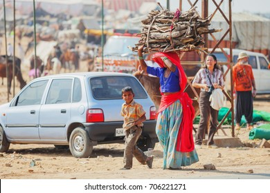 PUSHKAR, RAJASTHAN, INDIA - CIRCA NOV 2012: Traditional Fair in Pushkar. Woman carries a bundle of firewood