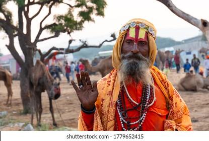 PUSHKAR, RAJASTHAN / INDIA - NOVEMBER 2019 : Portrait of an Indian Sadhu Baba (Monk) in traditional Saffron clothes at Pushkar Camel Fair