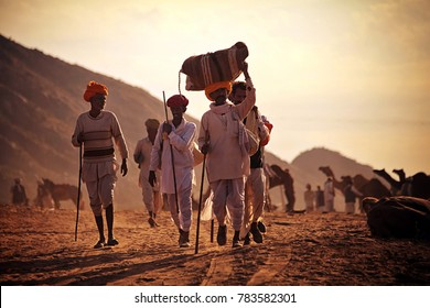 Pushkar, Rajasthan, India - November 24, 2012 : Some unidentified Rajasthani Indian rural men with their baggage arrive at Pushkar Camel fair (Pushkar Mela)