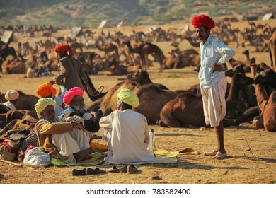 Pushkar, Rajasthan, India - November 24, 2012 : A group of Rajasthani Indian camel traders with their herd of camels, also other herds can also be seen  at Pushkar Camel fair (Pushkar Mela)