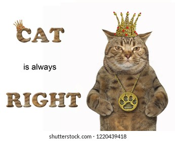 The pussycat is wearing a crown and a medallion. Cat is always right. White background.