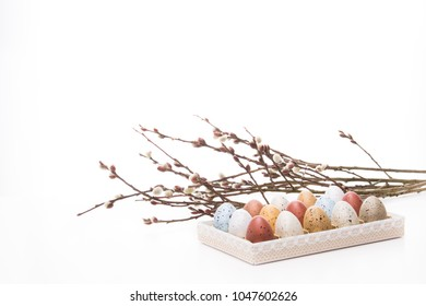 Pussy-willow and many-coloured easter quail eggs in a vintage handmade candies box. Isolated on white background.