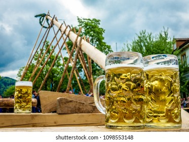 put up the maypole in bavaria and a mug beer