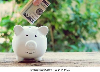 Put money on piggy bank. Saving money concept. Copy space.