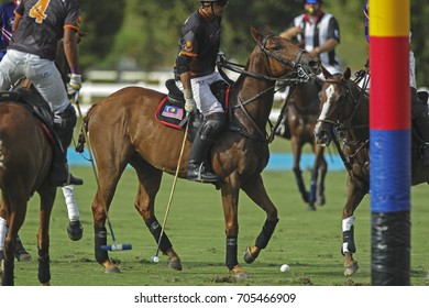 PUTRAJAYA, MALAYSIA 29 AUGUST 2017: Motion Blur. Selective focus. Polo athlete at the 29th SEA Games at the Equestrian Polo Event at Equestrian Park Putrajaya, Malaysia.