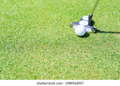 putter and golf ball on the green