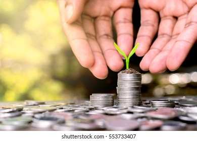 Putting coins stacked and seedlings on top. Along with a hands of a man were to handle.