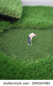 putting green made by artificial grass