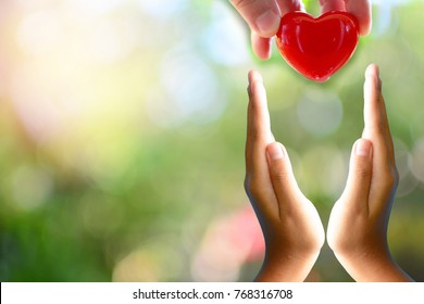 putting heart on hand for concept love healthcare and philanthropy