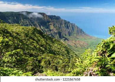 Puu O Kila Lookout on the Napali Coast, Waimea Canyon State Park, Kauai, Hawaii