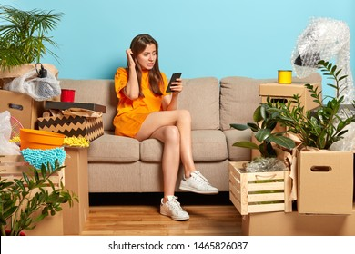 Puzzled young female scratches head, tries to pay for flat online, cannot make payment, sits on comfortable sofa, busy during moving day, cardboard boxes with belongings, houseplants around.