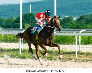 "PYATIGORSK, RUSSIA - JULY 07,2019: Finish horse race of the traditional prize 'Ogranichitelni"" on Pyatigorsk hippodrome,Northern Caucasus,Russia."