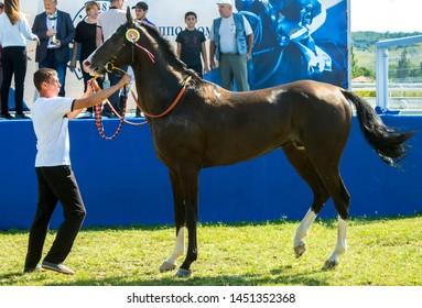 PYATIGORSK, RUSSIA - JULY 14,2019: The winner horse race of the traditional prize Konevodstva on Pyatigorsk hippodrome,Northern Caucasus,Russia.