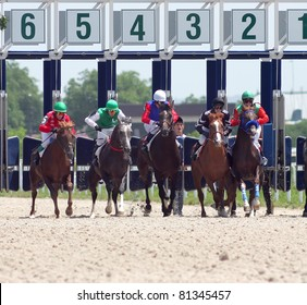 PYATIGORSK, RUSSIA - JULY 17: Jockeys (L - R)  Ulubaev, IPshukov,Hamidullin,Guseinov and  Saitgaleev race for the prize of Asuana on July 17, 2011 in Pyatigorsk, Caucasus, Russia.