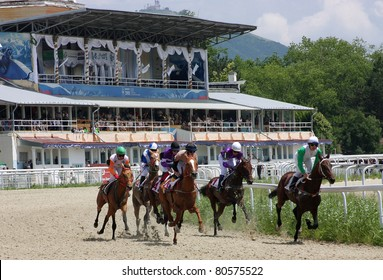 "PYATIGORSK, RUSSIA - JULY 3: Jockeys (L - R) Hatkov, Hamidulin, Aituganov,Mardanov,Kulinich and Guseinov race for the prize of the ""Absenta"" on July 3, 2011 in Pyatigorsk, Caucasus, Russia."