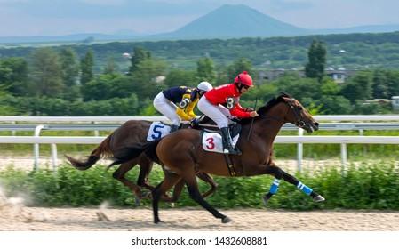 "PYATIGORSK, RUSSIA - JUNE 23,2019: Finish horse race of the traditional  prize 'Duglasa"" on Pyatigorsk hippodrome,Northern Caucasus,Russia."