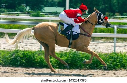PYATIGORSK, RUSSIA - JUNE 23,2019: Horse race of the traditional prize Letni on Pyatigorsk hippodrome.Ahead master jockey Tarasov Yegor on akhal-teke stallion Ruler.