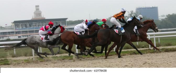 "PYATIGORSK, RUSSIA - SEPTEMBER 26: The race for the prize of the ""Abonementa""; The jockey Alberdiev  finish; September 26; 2010 in Pyatigorsk; Caucasus; Russia."