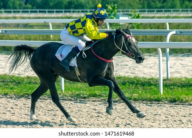 """PYATIGORSK,RUSSIA - AUGUST 04,2019: Horse race for the prize of the """"Prohorova' Cup"""" of Pyatigorsk hippodrome,Northern Caucasus,Russia."""