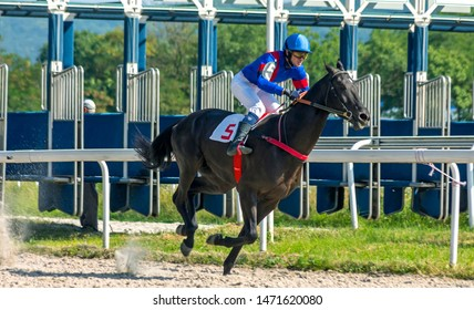 """PYATIGORSK,RUSSIA - AUGUST 04,2019: Horse race for the prize of the """"Arabian Horse Breeders' Cup"""" of Pyatigorsk hippodrome,Northern Caucasus,Russia."""