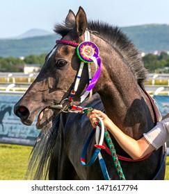 "PYATIGORSK,RUSSIA - AUGUST 04,2019:The  winner race for the prize of the ""Terski konezavod"" of Pyatigorsk hippodrome,Northern Caucasus,Russia."