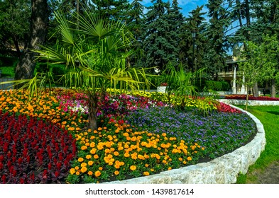PYATIGORSK,RUSSIA - JUNE 26,2019: Flowerbed with palms and colorful plants in Pyatigorsk,Northern Caucasus,Russia.