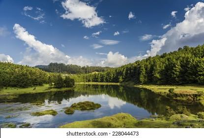 Pykara lake or river in Ooty, Tamilnadu, India