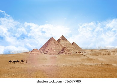 Pyramids Egypt Giza All,  with Camels