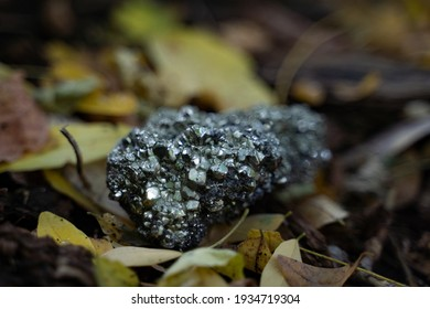 Pyrite on fall leaves in nature