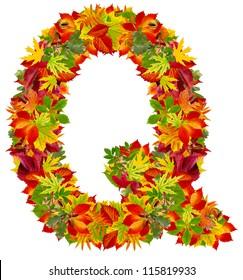 Q, autumn alphabet isolated on white