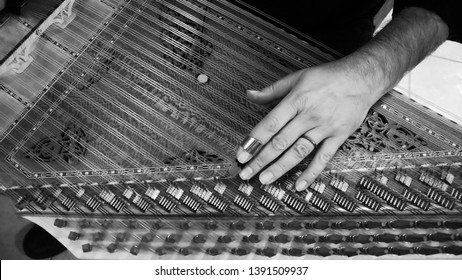 Qanun Player Closeup Photo In Black And White.