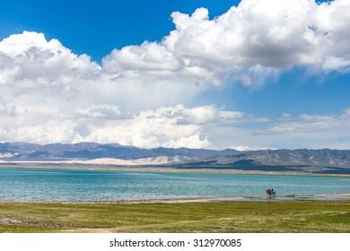 Qinghai Lake scenery and tourist