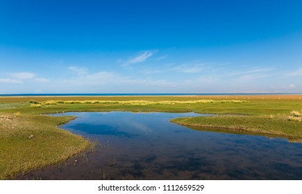 Qinghai Lake,Qinghai China