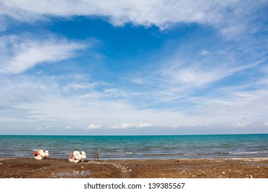 Qinghai Lake,the biggest lake of China