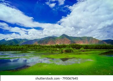 Qinghai-Tibet Plateau scenery