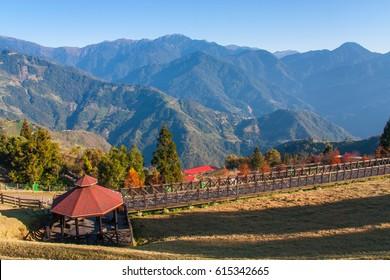 Qingjing Farm at Taiwan Winter