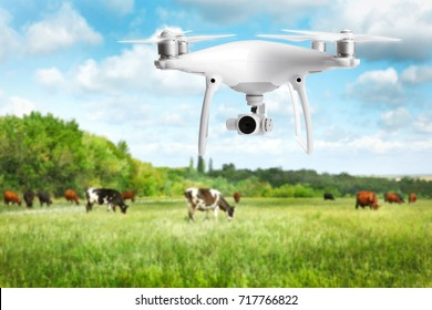 Quadcopter with camera flying over field. Smart agriculture concept