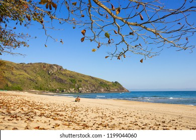 Quadricycle in the distance in Bonete beach on a sunny day. Leaves on the ground and dry branches. Praia do Bonete, Ilhabela, Sao Paulo, Brazil.