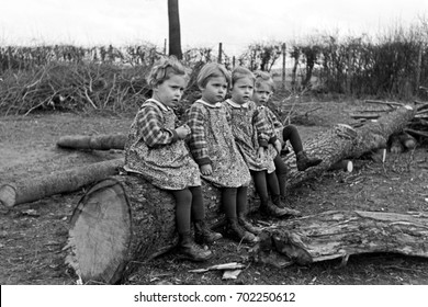 Quadruplet girls sitting on fallen tree trunk